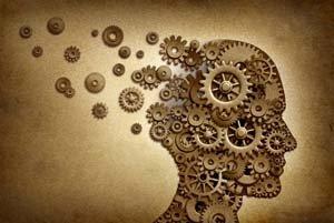 Шестеренки головного мозга