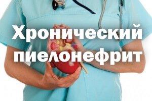Почка в руках врача