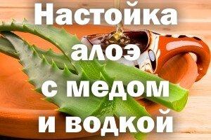 Настойка Алоэ