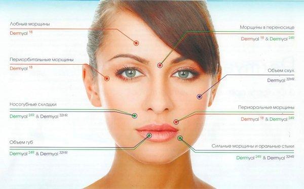 Виды складочек кожи