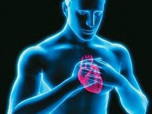 Область сердца