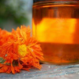 Настойка календула и цветок