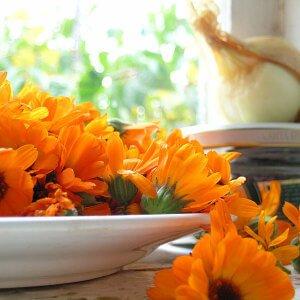Цветки растения