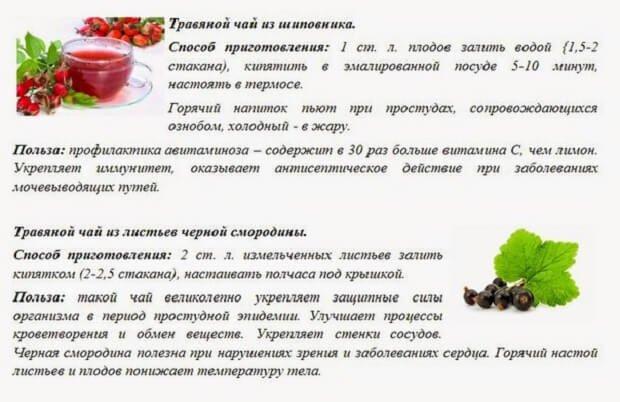 Рецепты из шиповника