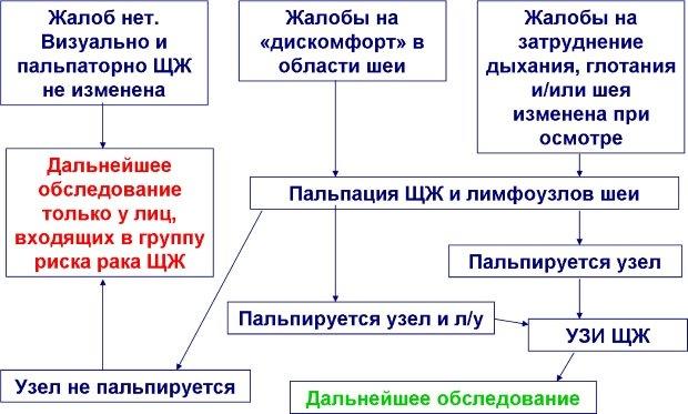 Алгоритм обследования