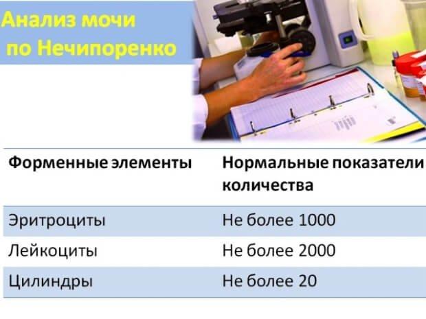 Норма эритроцитов, лейкоцитов и цилиндров