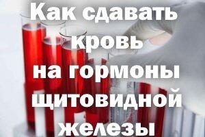 Как сдавать кровь на гормоны щитовидной железы
