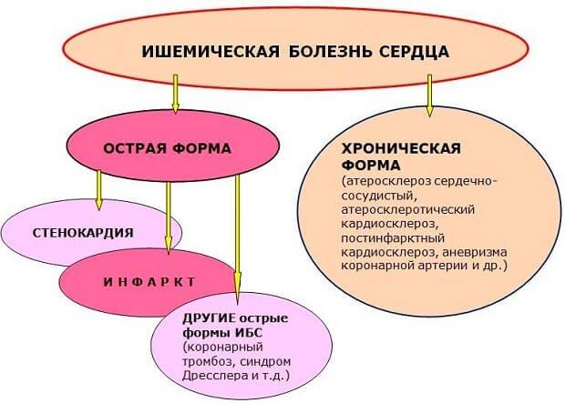 виды болезни
