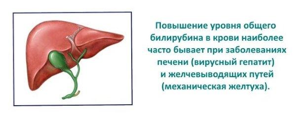 Повышение билирубина при заболеваниях печени