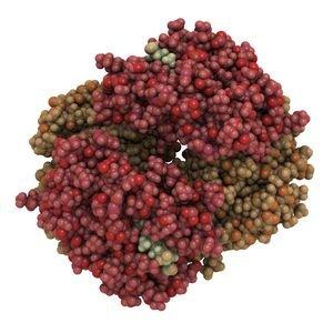 Молекулы билирубина