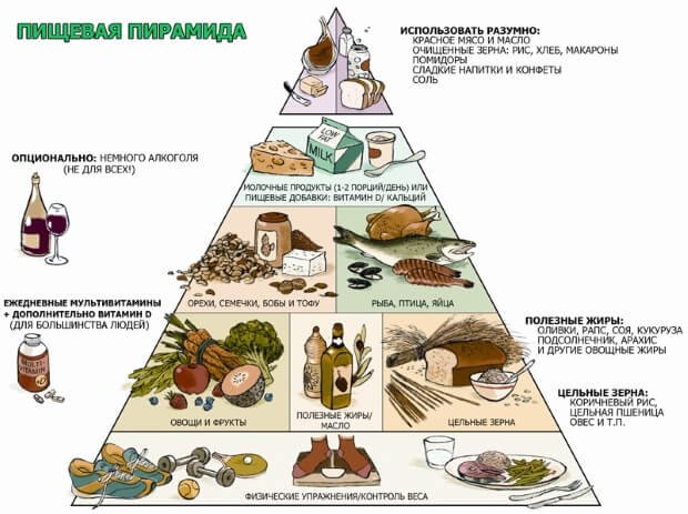 пирамида продуктов