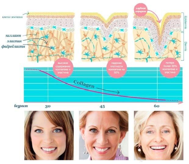 Процесс старения кожи лица
