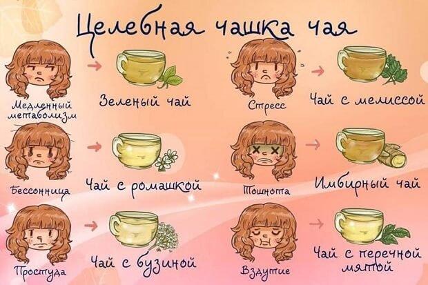 использование вида зеленого чая