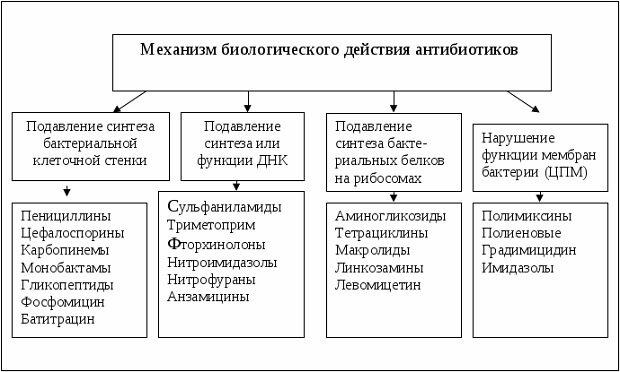 Механизм биологического действия
