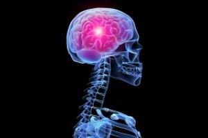 активизируется мозг