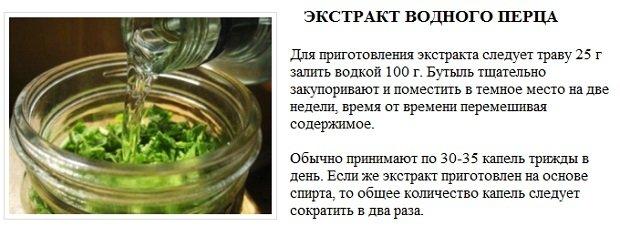 Рецепт настойки