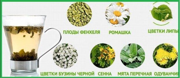 Состав травяного чая