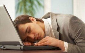 Спит на ноутбуке