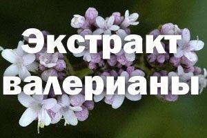 Мелкие цветочки