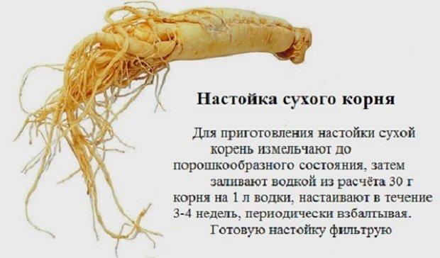 настойка сухого корня
