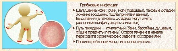 Характеристика микозов