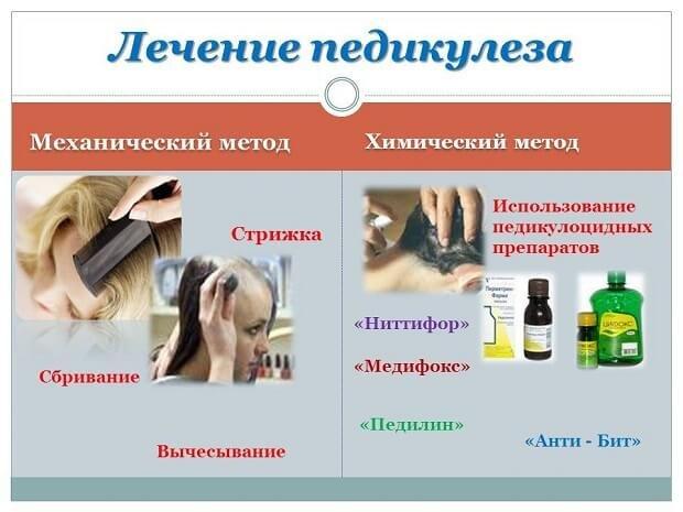 Лечение педикулеза голове