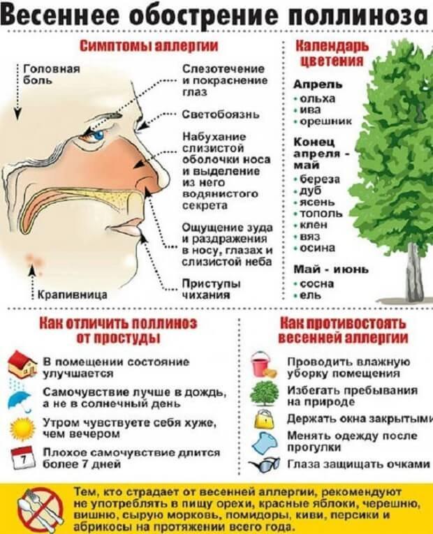 Обострение поллиноза