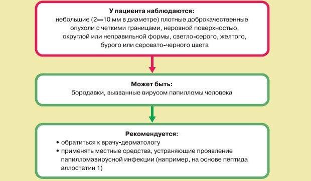 Описание бородавок