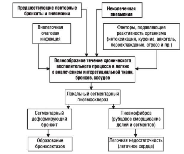 Патогенез пневмосклероза