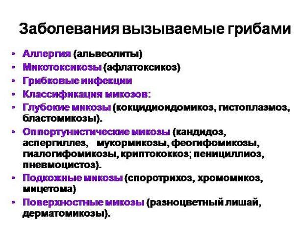 Классификация микозов