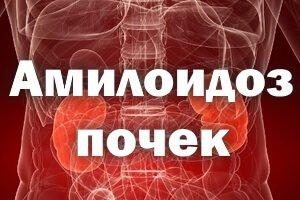 Мочеобразующие органы