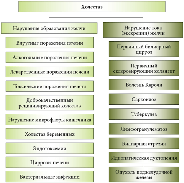 Основные нарушения желчи
