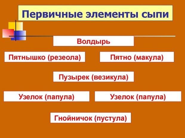 Первичные элементы