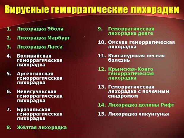 Вирусные геморрагические лихорадки