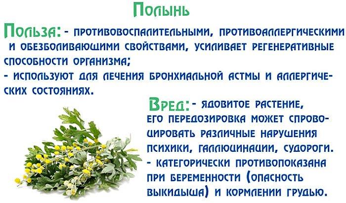 Целебные свойства травы