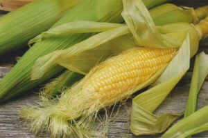Как выглядят кукурузные рыльца