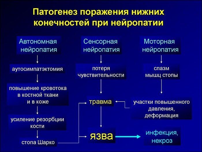 Развитие нейропатии