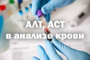 АЛТ, АСТ в анализе крови – что это