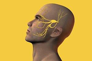 Тройничный нерв у больного