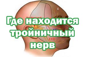 Тройничный нерв - где располагается